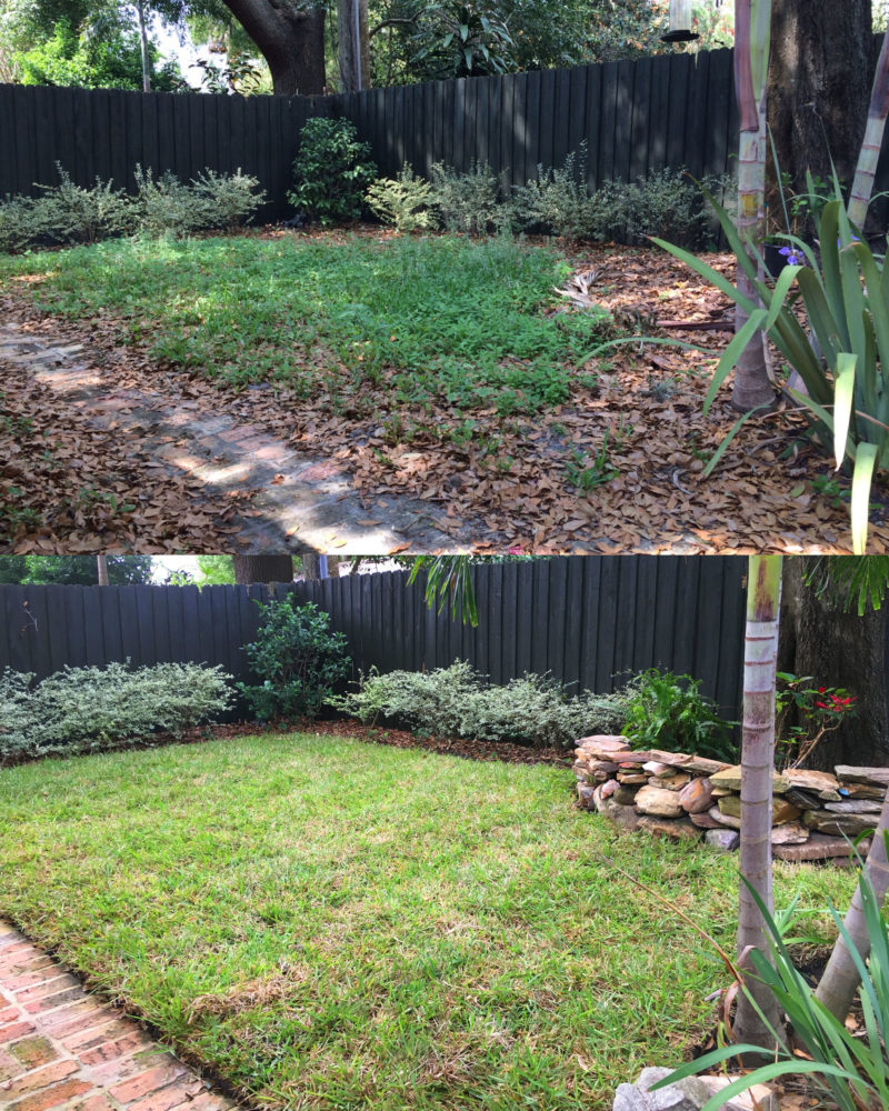Residential backyard sod installation before after