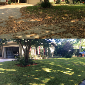 Residential frontyard sod installation before after